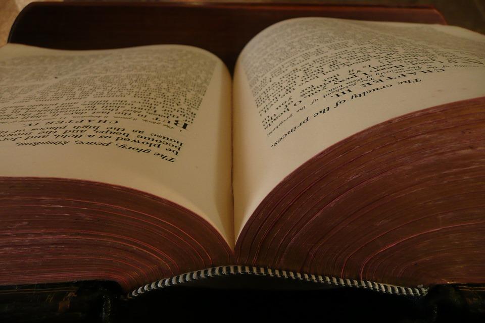 book-19685_960_720